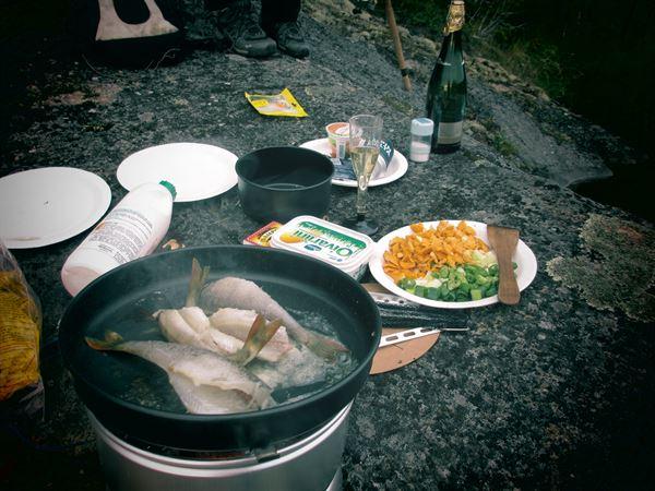 Trangia camping cooker
